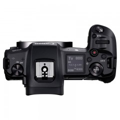 佳能 EOS R 单机 全画幅专业微单相机 EOSR专微 单机身套机